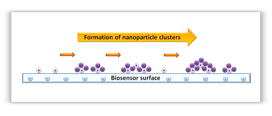Nanoparticle clusters