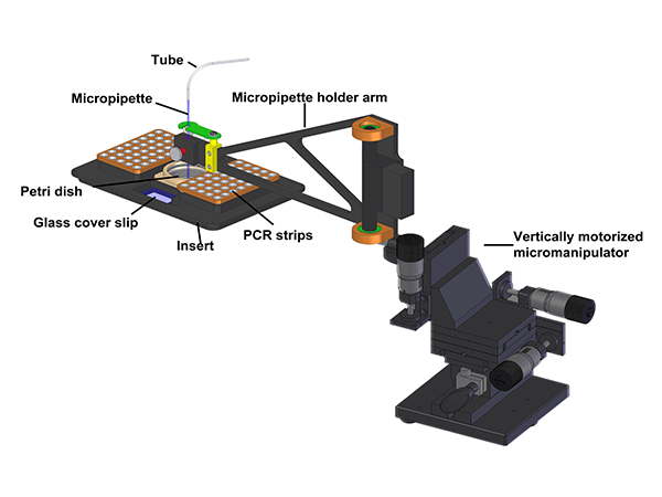 Computer controlled micropipette